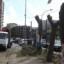Siracusa – L'Amministrazione continua a tagliare alberi senza spiegare perchè