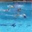 Roma- Pallanuto: l'Ortigia Femminile sconfitta alla  piscina Zero9  dalla Racing Roma