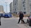 Siracusa: Arrestato pregiudicato; Controlli in via Algeri; Sigilli in Bar con blatte di Ortigia. Visita del generale Del Sette
