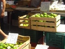 Siracusa. Arrestato mentre raccoglie 500 kg di agrumi in un limoneto. Priolo: Rubava rame e i carabinieri lo arrestano.