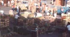 Siracusa – Mercato ortofrutticolo presto adeguato con scarichi fognari a norma.