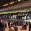 Siracusa- Sabato all'Ippodromo con 6 corse in programma