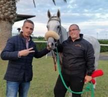 Siracusa –  The Dreamer firma la II Tris nazionale ospitata all'Ippodromo del Mediterraneo