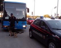 Siracusa – Carabinieri arrestano, sul bus scolastico studente priolese con 2 dosi di marijuana