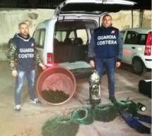 Siracusa – Guardia Costiera senza sosta contro la pesca di frodo di ricci: Rigettati in mare 1600 ricci. Sanzione da 12 euro per 2 pescatori notturni.
