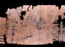 Siracusa – Il Museo del papiro vende i suoi gioielli di famiglia per evitare la chiusura, ma esplode la polemica sul governo regionale