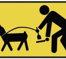 Pachino,conduzione di animali domestici nei luoghi pubblici: Scatta l'ordinanza per la disciplina. Sanzioni fino a 500 €