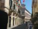 """Siracusa. Vinciullo nota una palma sul timpano del Teatro Comunale: """"La pianta crescerà ancora più rigogliosa e,poi sarà necessario intervenire con soldi dei cittadini""""."""